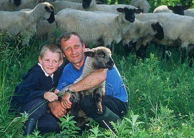 Tis the Season to Give Back…Heifer International