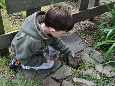 Kids Craft: Bug Hunting with Mason Jars