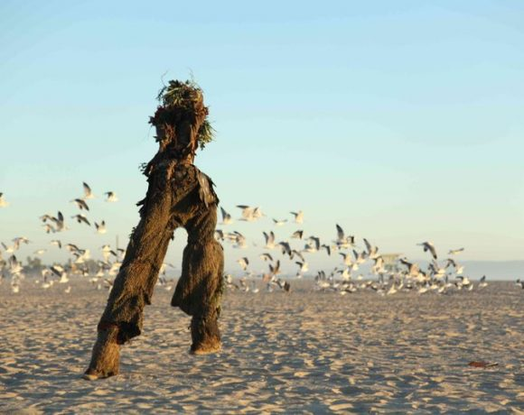 The Treeman, an Eco-Warrior Defending Nature