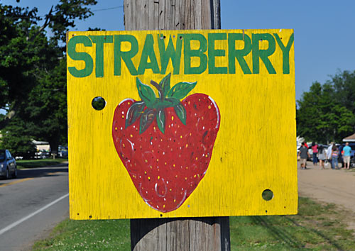 Strawberry Festival Mattituck NY