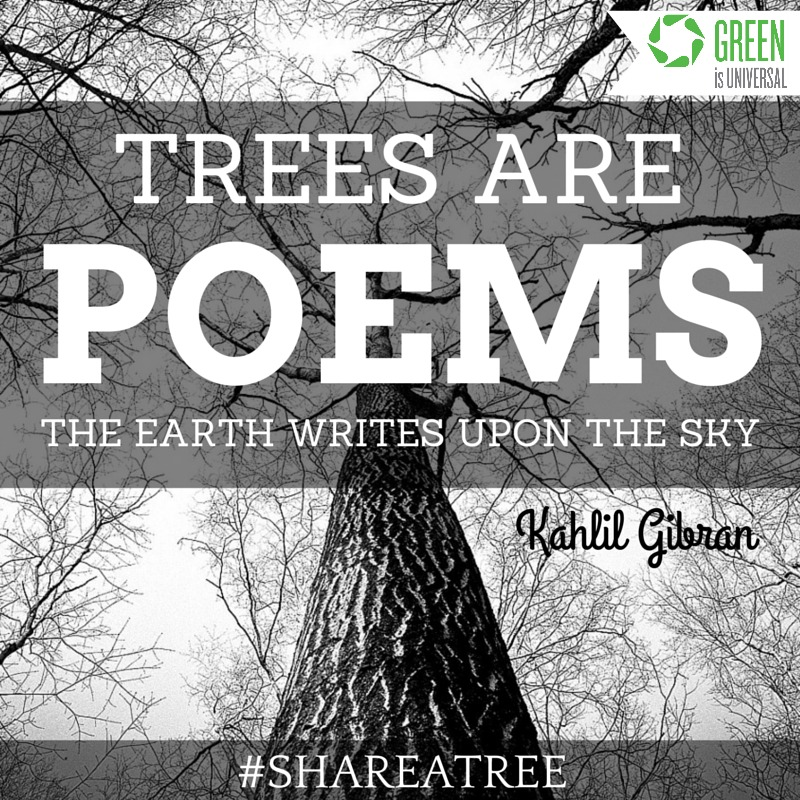 Trees are Poems