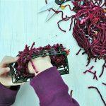 Help BackYard Birds Build Their Nests, www.weknowstuff.us.com