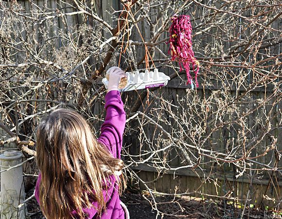 Recycled Bird Feeders (Made With Egg Cartons)