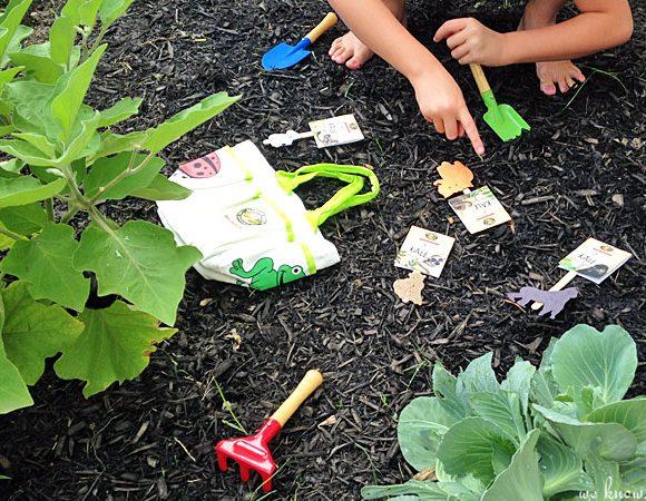 Giveaway! EnviroKidz Gardening Kit
