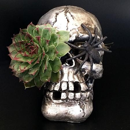 wks_skull4
