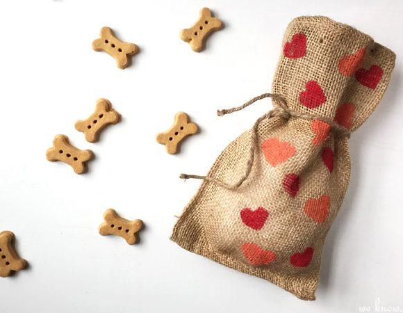 Homemade Dog Treat Bags