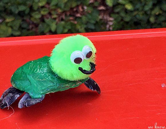 Summer Fun: Sea Shell Turtles Kids Craft