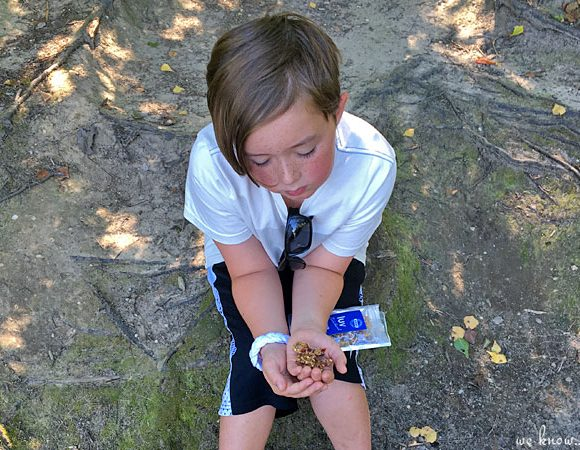 Luv Michael: Long Island Granola That Gives Back