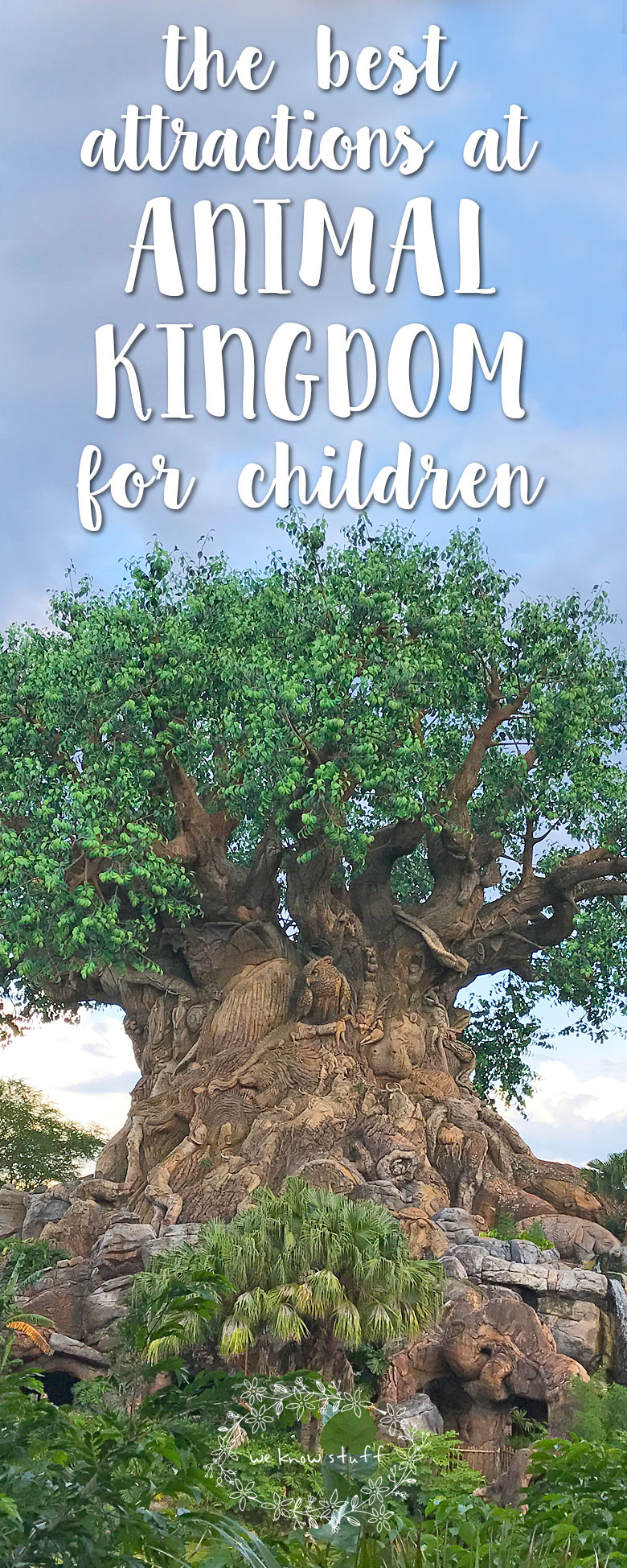 Recently, we vacationed in Disney World with our three boys and we had such a blast that I wanted to share my opinions about which rides are the best attractions at Animal Kingdom for young children and toddlers.