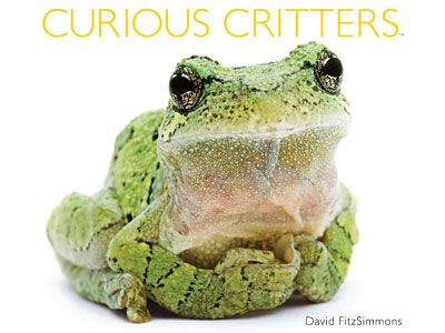 http://www.weknowstuff.us.com Curious Critters
