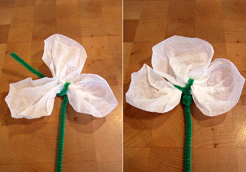 We Know Stuff Coffee Filter Shamrocks