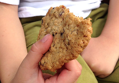 http://www.weknowstuff.us.com Fiber Rich Oatmeal Cookies