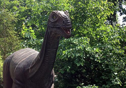 Bronx Zoo Dinosaur Safari http://www.weknowstuff.us.com