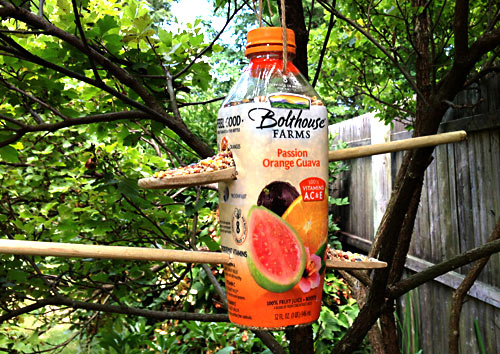 These recycled plastic bottle bird feeders are a great way to help keep trash out of the recycling bin for a little while longer. Recycled Bolthouse Bottle Birdfeeders | www.weknowstuff.us.com | We Know Stuff