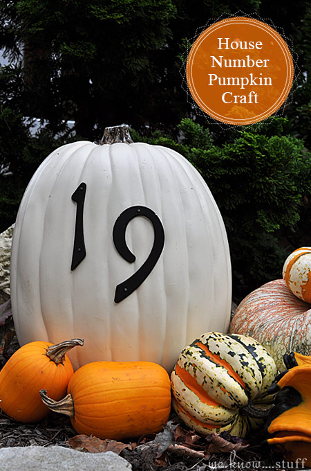 Looking for Outdoor House Number Ideas? Or an interesting way to jazz up your front porch? Our Funkin Pumpkin Craft is the perfect fall project for your home.