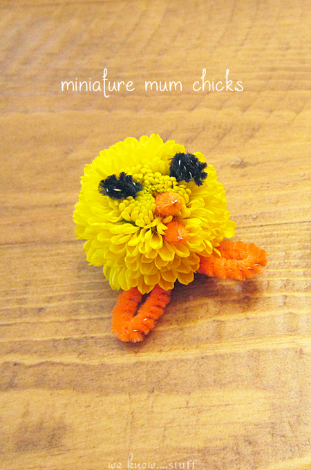 These adorable Easter decorations are right up my alley. I love flower crafts for kids, even more so when they turn into teeny tiny baby chicks! we know stuff | Easter Craft: Miniature Mum Chicks | https://www.weknowstuff.us.com