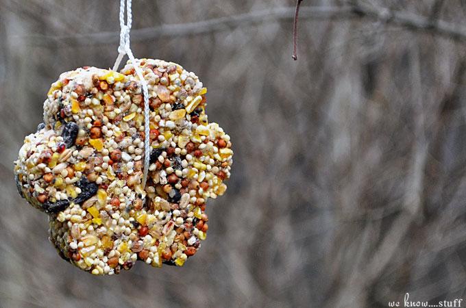 Diy Bird Seed Feeders Easy To Make Nature Friendly Kids Craft
