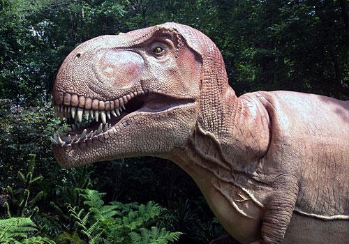 Bronx Zoo – Dinosaur Safari