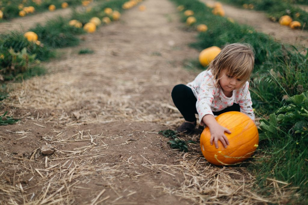 Sensory Processing Disorder and Halloween: Although most kids love Halloween, it can be a sensory nightmare for children with sensory issues. by Patrick Fore on Unsplash