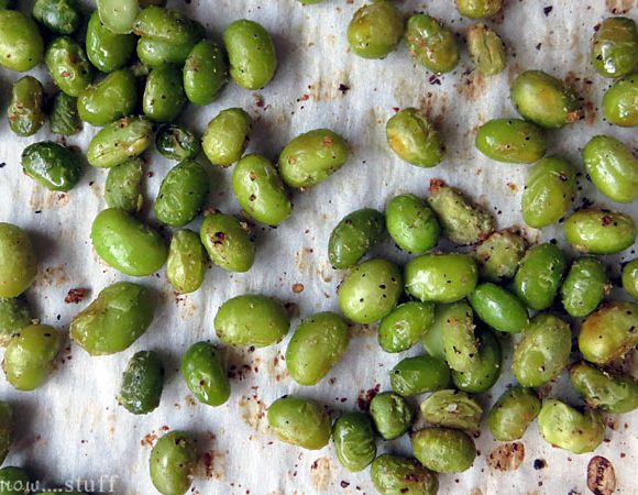 We Know Stuff | Crispy Roasted Edamame | www.weknowstuff.us.com