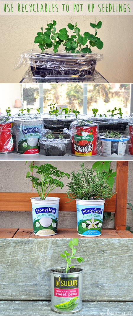 What recyclables do you use  to pot up your plants? Tag us on Instagram, @weknowstuff, and show us what you've got growing in your yard!