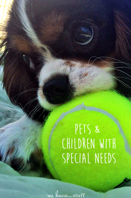 Can Pets and Children With Special Needs go together? Of course, they can! Our Expert weighs in on how to determine if your special needs child will benefit from having a pet and what things to consider before bringing one home.