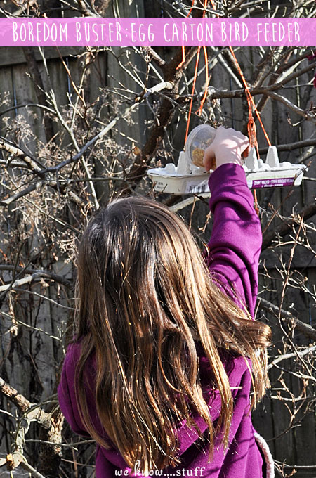 These Recycled Bird Feeders Are Made With Leftover Egg Cartons Theyre An Easy
