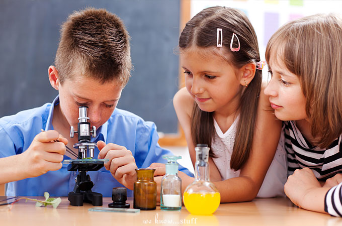 The Orkin Start with Science Campaign lets the public fund in-class learning experiences in public and charter schools nationwide via DonorsChoose.org.