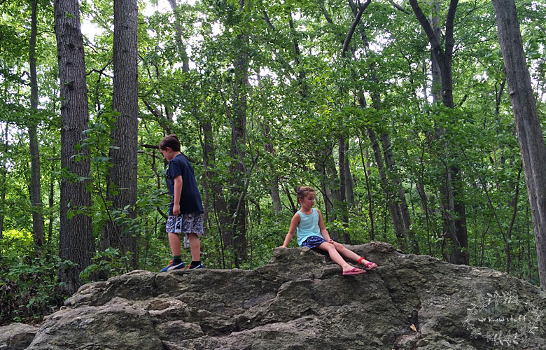 Avalon Park and Preserve is a hidden little gem full of whimsy & wonder making it the perfect place to go for a weekend hike or day trip. Located in Stony Brook, NY.