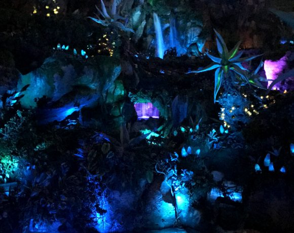 A Fascinating Adventure: Avatar World at Animal Kingdom