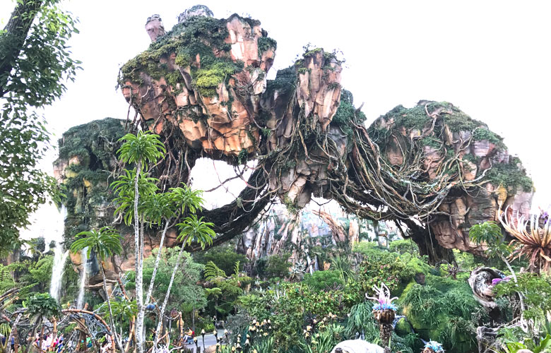 Unsure of where to go on your next family vacation? Visit Disney's Pandora - Avatar World at Animal Kingdom. Our family thought it was magnificent!