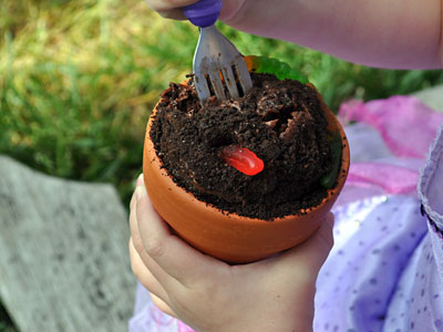 Dirt Cupcakes, Kids Garden Party,  www.weknowstuff.us.com