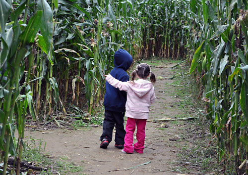 "Are you tired of the crowds? Well then check out Gabrielsen's Country Farm in Jamesport, NY. It's quieter than most farms on the North Fork and is loaded with stuff to do: an 11-acre corn maze, animals, music, hay rides, a sensory corn crib and no ""pick your own"" pumpkin crowds."