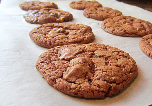 Gluten Free Chococolate Chocolate Chip Cookies https://www.weknowstuff.us.com