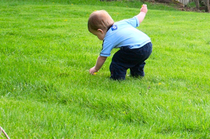 10 Easy Ways To Get Your Kids Involved In Gardening