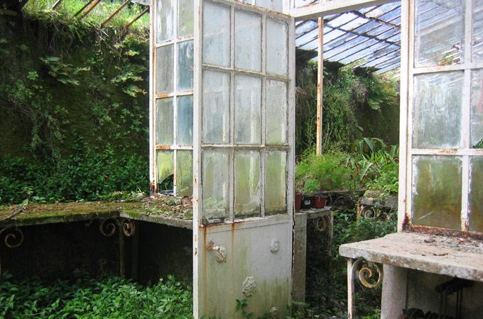 gardening_wp_main